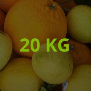 20 KG