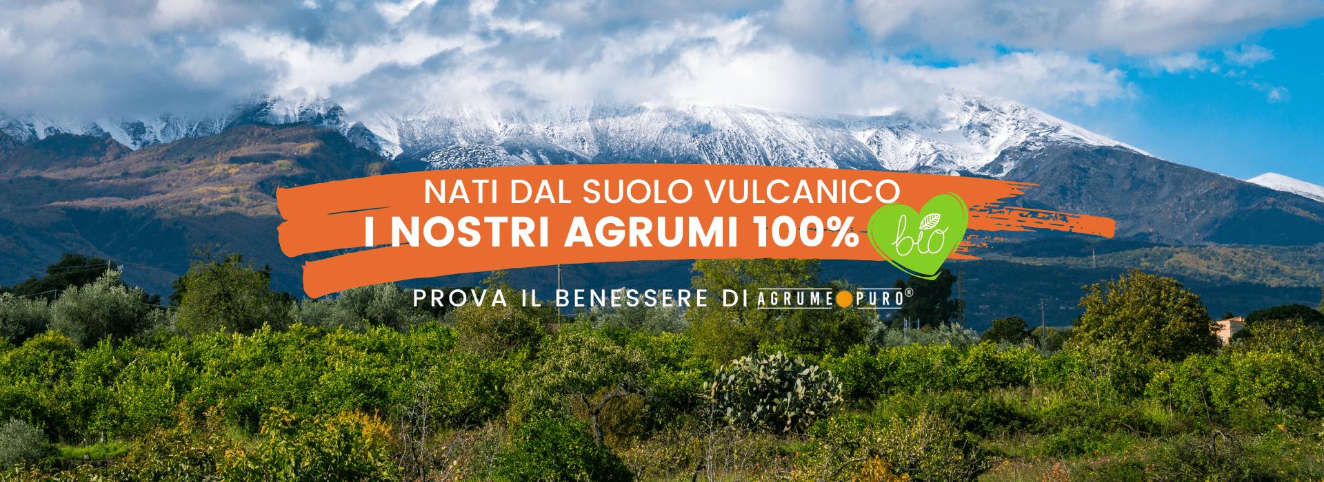 Agrumi biologici siciliani