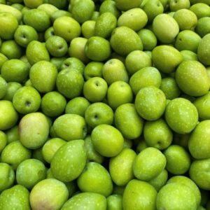 Olive nocellare dell'Etna